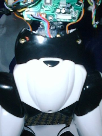 Robosapien's lower torso with shell on
